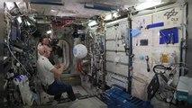 ISS: Roboter Cimon auf seiner ersten Mission mit Alexander Gerst