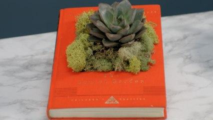 Succulent Book Garden