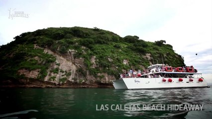 The Top 10 Things to do in Puerto Vallarta