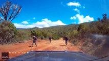 Attaque à la machette sur une route (Kenya)