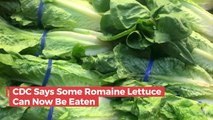 CDC Does A 180 On Eating Romain Lettuce: Why