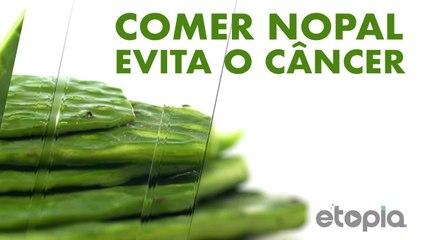 Evita desenvolver câncer comendo nopal (cactos).