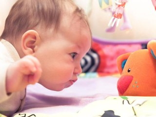 Cómo Ve El Bebé Mes A Mes De Sombras A Colores En 12 Meses