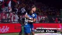 But de Stiven  Mendoza  EA Guingamp vs Amiens SC (1-2)  2018-19