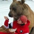 Bear Enjoys Snack on Blanket