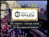 90. Surat Al-Balad - Muhammad Thoha Al Junayd - Juz 'Amma