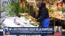 86% des poissons vendus en grande surface proviennent de pêche non durable, selon l'UFC-Que Choisir