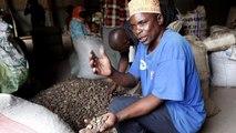 Nigeria : Amnesty dénonce un conflit meurtrier entre agriculteurs et éleveurs