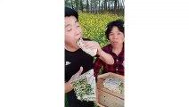 EATING SHOW COMPILATION-CHINESE FOOD-MUKBANG-challenge-Beauty eat strange food-asian food-NO.244