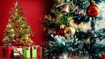 Christmas Tree: Brings Good luck   इस तरह वास्तु दोष दूर करता है क्रिसमस ट्री   Boldsky