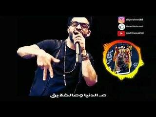 حالة واتس مهرجان الدخلاوية في المنيا