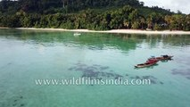 Andaman Islands - aerial view of pristine beaches and thick rain forests in India