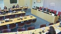 Délégation aux collectivités territoriales et à la décentralisation : Auditions diverses - Jeudi 20 décembre 2018