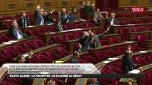Gilets jaunes : après l'Assemblée, le Sénat adopte à son tour les mesures d'urgence