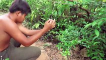 Primitive Man Rescues A Tiger Stuck In Deep Hole - Man Saved Tiger Life From Deep Hole