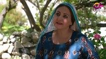 Deedan - Episode 10 - Aplus Dramas - Sanam Saeed, Mohib Mirza, Ajab Gul, Rasheed - Pakistani Drama