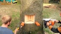 Amazing Fastest Skill Cutting Big Tree ChainSaw Machines Heavy Biggest Felling Tree Machine working