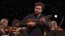 Vivaldi : Concerto pour mandoline en ut Majeur P 134 RV 425 (Julien Martineau / Rinaldo Alessandrini)