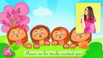 La famille tortue - Comptines à gestes pour bébés  - Titounis part 2/2