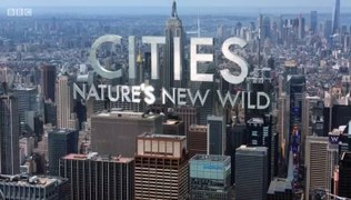 Cities Natures New wild S01E01 Residents 2019 Documentary Se