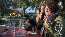 Réveillon : au Cap Ferret, on va fêter la nouvelle année sur la plage