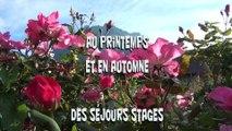 """les stages ateliers au jardin """"potagé"""" du chateau des Allues, pour tous, débutants ou jardiniers confirmés"""