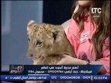 بالفيديو ... اندهاش الغيطى بسبب مداعبة انوسه كوته لــ الاسد جولد