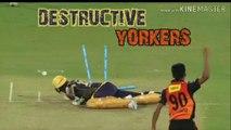 Top 10 Best Yorkers in Cricket History Ever ●► Destructive Yorkers