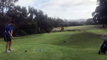Incroyable : deux kangourous se battent sur le terrain de golf
