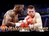 Pernell Whitaker vs Julio Cesar Chavez (Highlights)