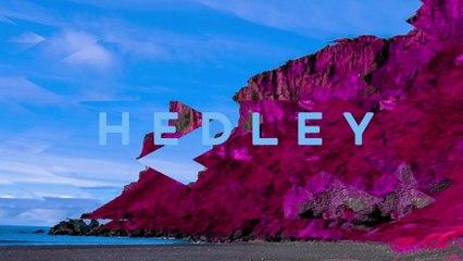 Hedley - All Night