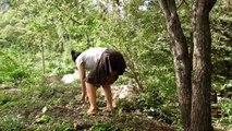 Trouver des fruits à manger de la forêt délicieux par désert primitif - Find Fruits in Forest-eating  delicious by Primitive wilderness