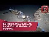 Sacan cinco toneladas de basura de cenotes en Yucatán