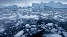 Scientists Baffled By Antarctic Sea Ice's Rapid Disappearance