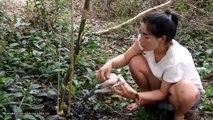 Poulet sauvage primitif en pleine forêt - Poulet noir grillé à manger délicieux - Primitive Wilderness-Hunting Chicken in forest -Grilled chicken black eating delicious
