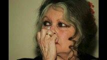 Municipales 2020 : Brigitte Bardot prête à se lancer ?