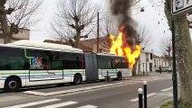 Un bus prend feu dans le quartier Bacalan à Bordeaux.