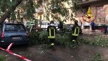 L'Italia sferzata dal maltempo: nubifragi, alberi caduti e morti