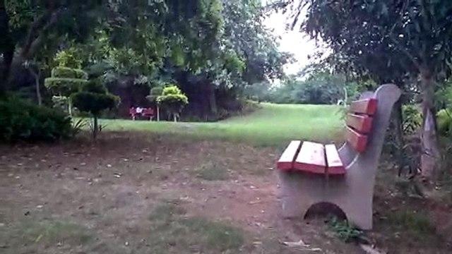 Beautiful park in sant nagar