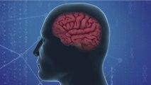 Biotech Startup Doing Research On Parkinson's And Alzheimer's Using Human Blood