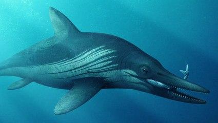 New Scan of Ancient Sea Monster Reveals Fake 'Bones'