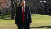 The Environmental Impact of Trump's Border Wall