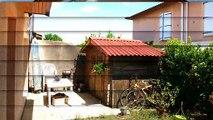 A vendre - Maison/villa - Pessac (33600) - 4 pièces - 84m²