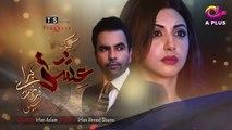 Kyunke Ishq Baraye Farokht Nahi - Episode 13 - Aplus Dramas - Junaid Khan, Moomal - Pakistani Drama