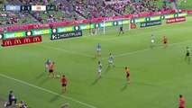 Ambient: Pigeon intercepts pass in Australian A-League match