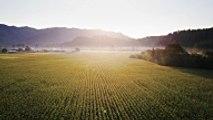 L'agriculture raisonnée, qu'est-ce que c'est?