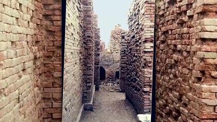 सिंधु घाटी सभ्यता के आज की पीढ़ी को 5 नायाब तोहफे
