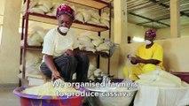 Burkina Faso: FASO ATTIEKE to transform the local cassava