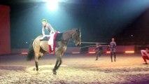 Le salon international équestre Cheval Passion