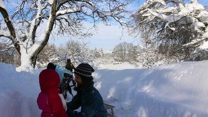 Winter am Riedlhof V
